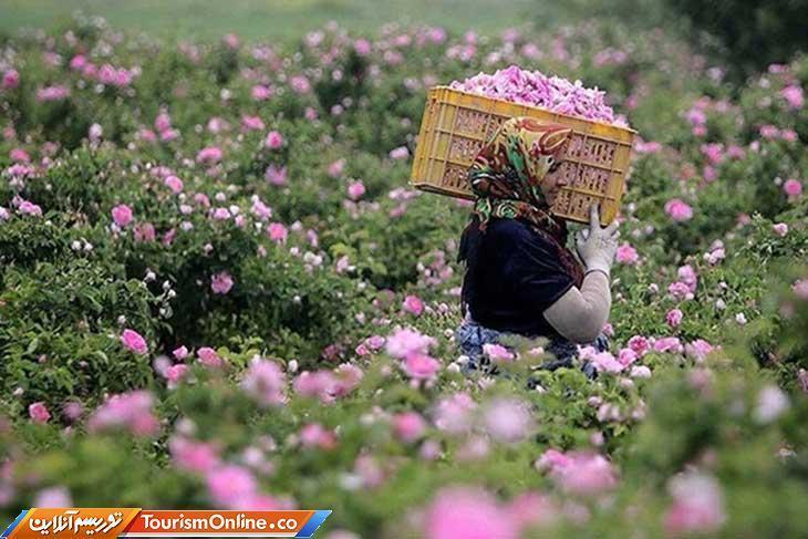 باغ های اِرم در فارس احداث می گردد