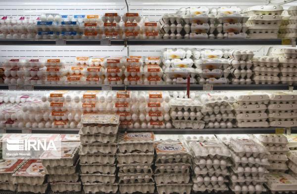خبرنگاران تشکیل بارانداز تخم مرغ در استان ها با دستور وزیر جهاد کشاورزی