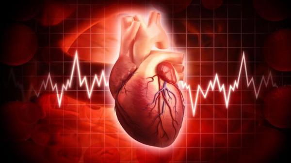 علت ضربان قلب بالا چیست؟